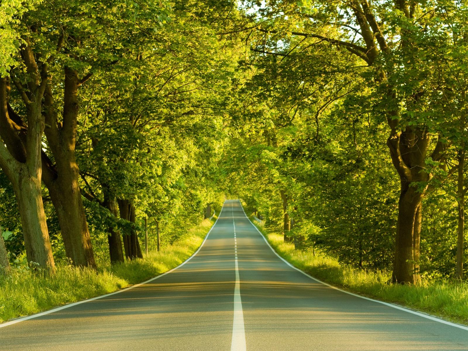 حفظ-طبیعت-وظیفه-طبیعت-گردان-و-مسافران-نوروزی